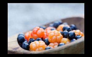 le bacche del benessere:mora palustre, mirtillo rosso o nero, ribes, ricchi inflavonoidi